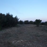 Restauration de pelouses sèches méditerranéennes